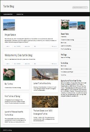 Turtleblog